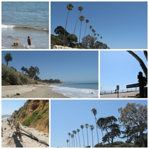 Butterfly beach, California